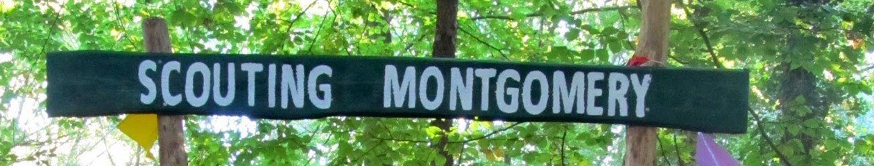 Scouting Montgomery Huizen